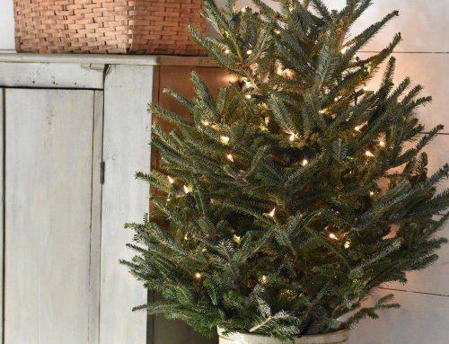 Decoración Navideña: Trucos, consejos e ideas de decoración para esta Navidad