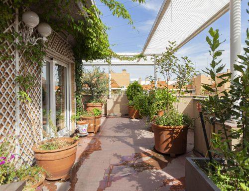 Ático con terraza y vistas a la Casa de Campo